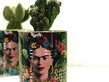 Cache pot Frida